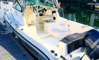 Lion City Fishing Charter for 5 People onboard Striper 2301 Powerboat in Singapore