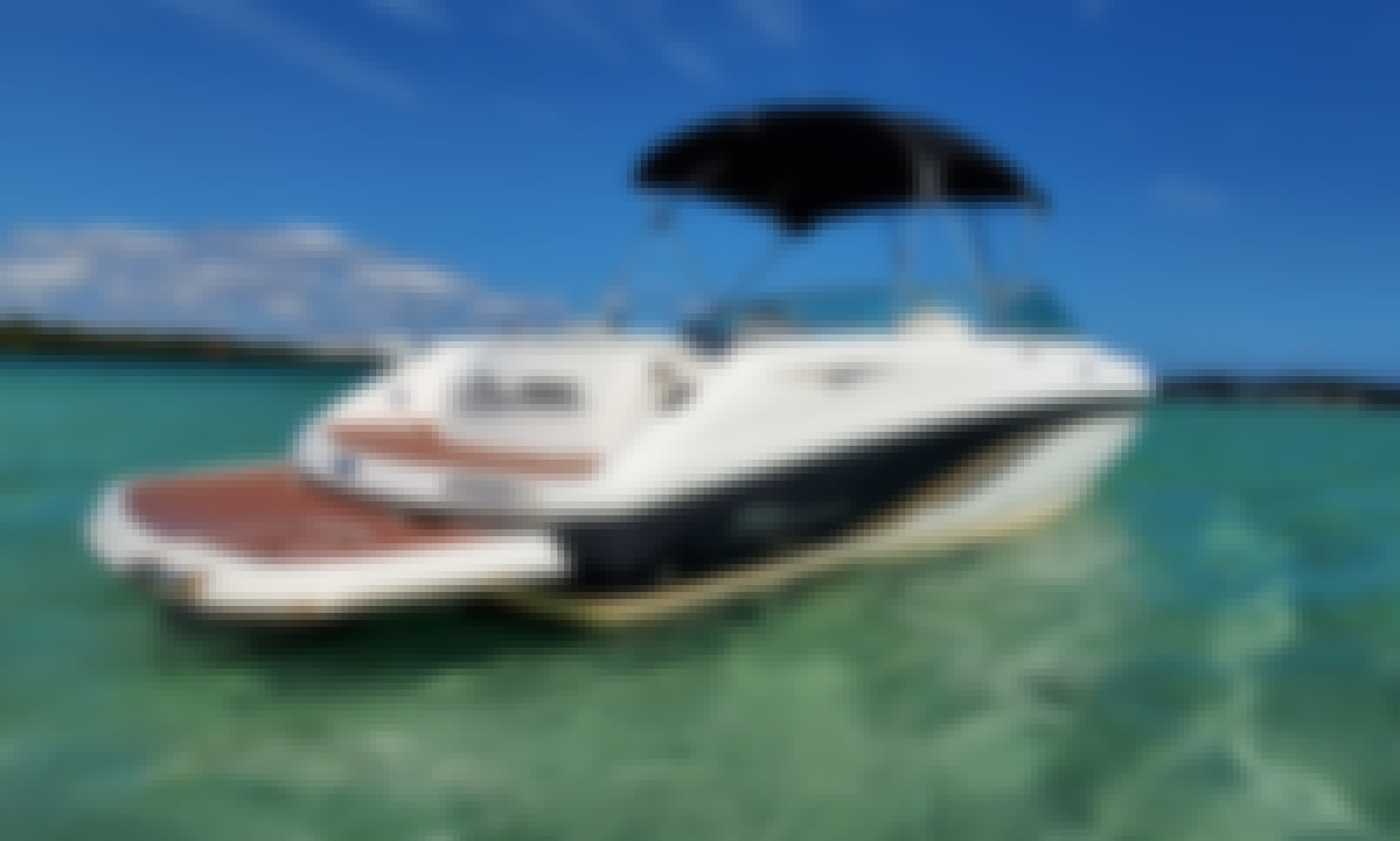 25F Party Boat Ideal for Sandbar & Cruising