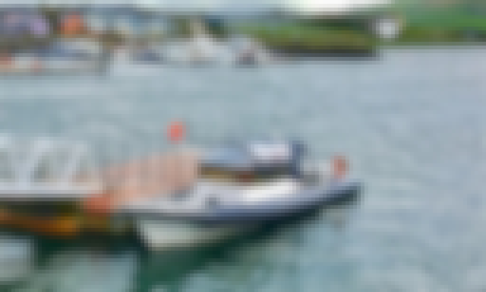 Private Boat Hire for High-Speed Tour around Dingle Bay!