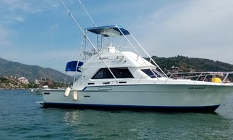 Fishing Charter on 42'ft SEADUCTION  Cruiser Yacht in Ixtapa Zihuatanejo, Mexico