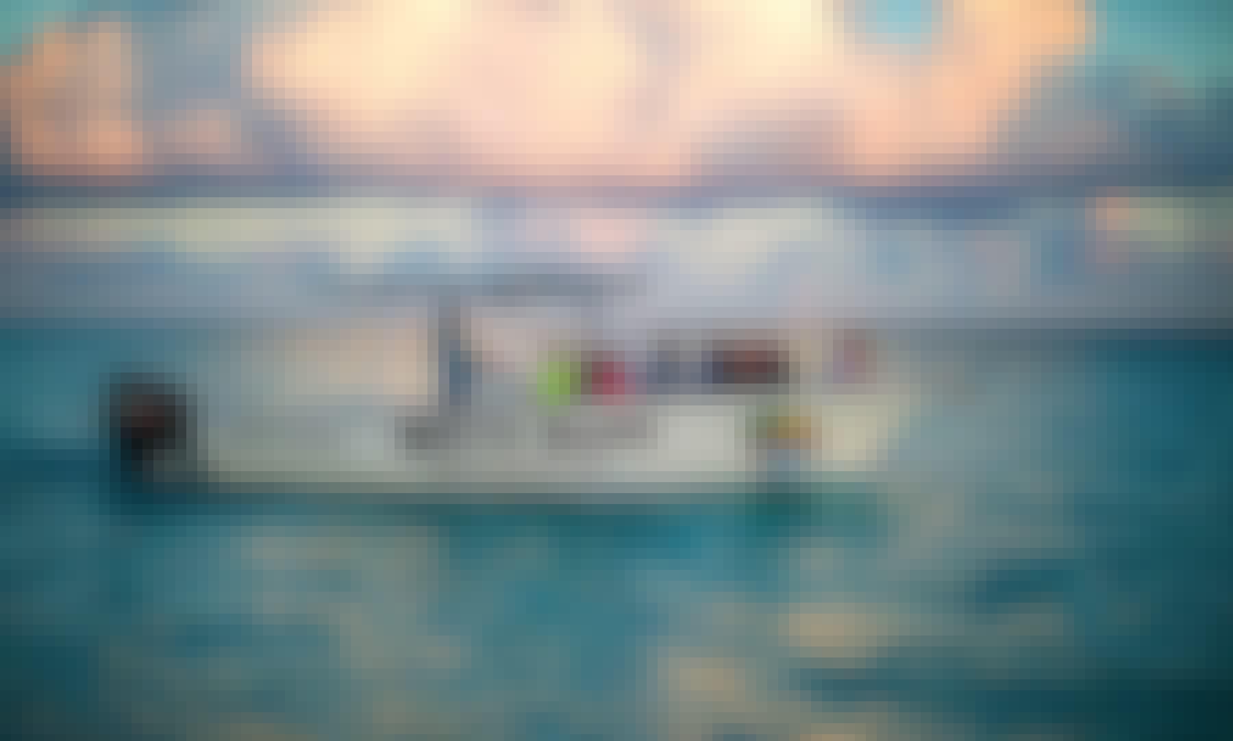 Sunrise Sting Ray Sand Bar and Snorkel Trip