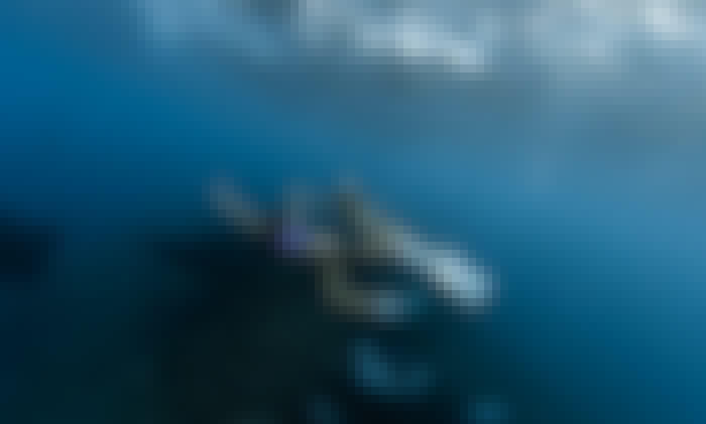 Unique day trip to Nusa Penida by speedboat + swim with giant Manta Rays