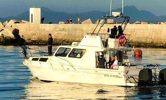 Spectacular boat based Bay tour in Hermanus