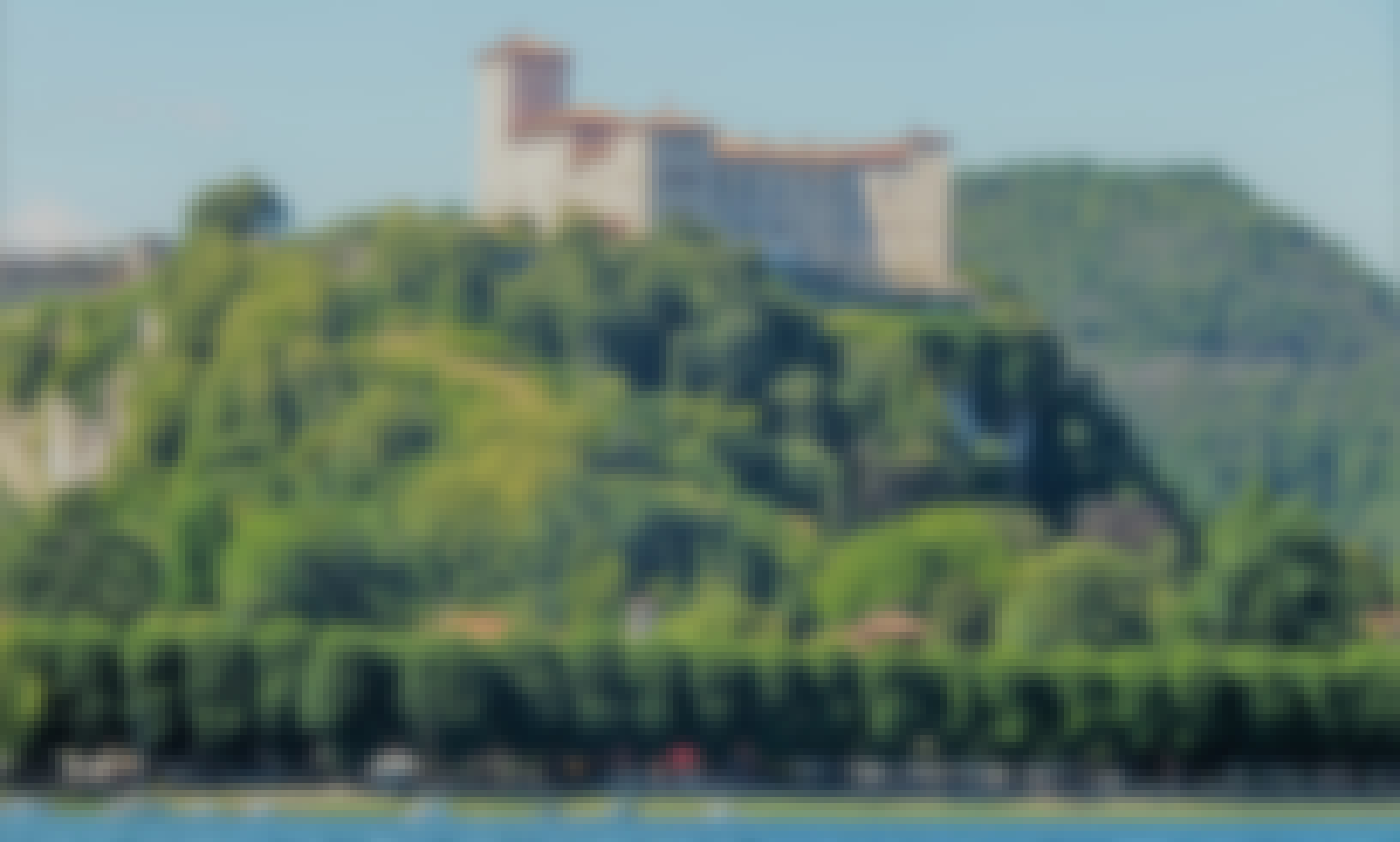 Private cruise with captain in Lake Maggiore, Milan (T)