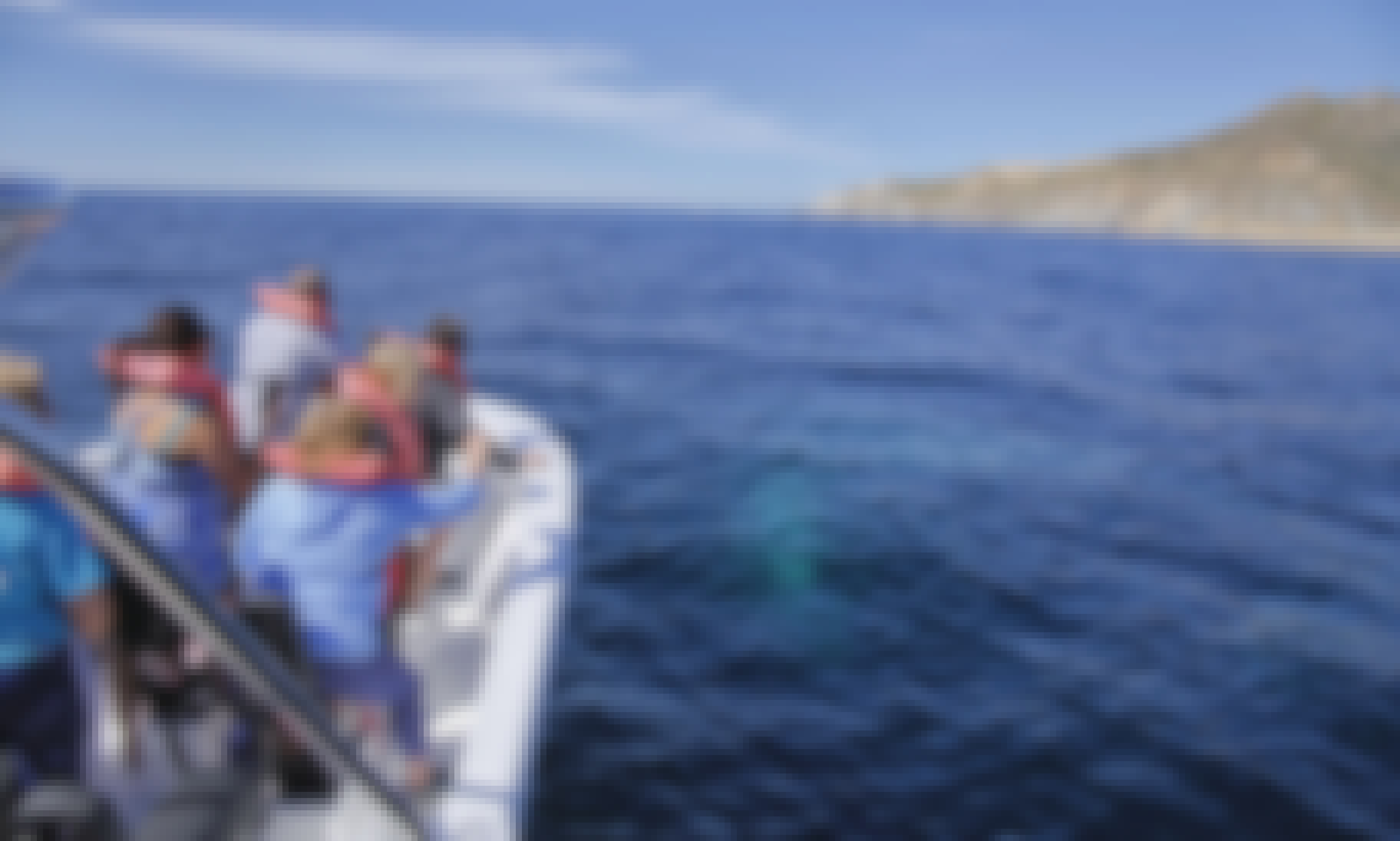 2 hours Whale watching tour : captain + fuel + handeck included in quote..