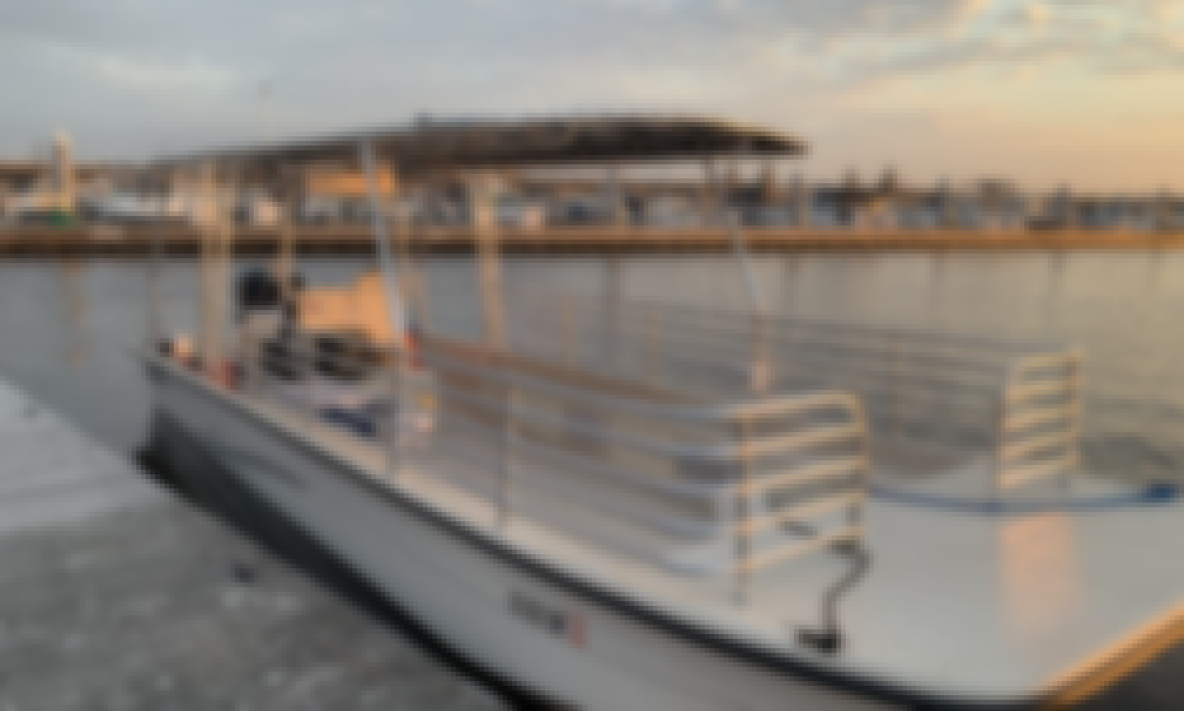 2-Hour Private Charleston Dolphin Boat Tour for 18 People!