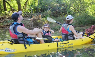 Wildlife and Mangrove Kayaking Tour Río Ora