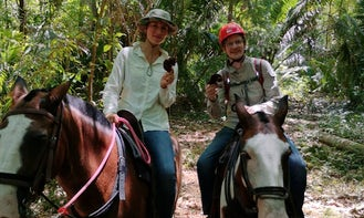 Horseback Riding in Playa Carrillo