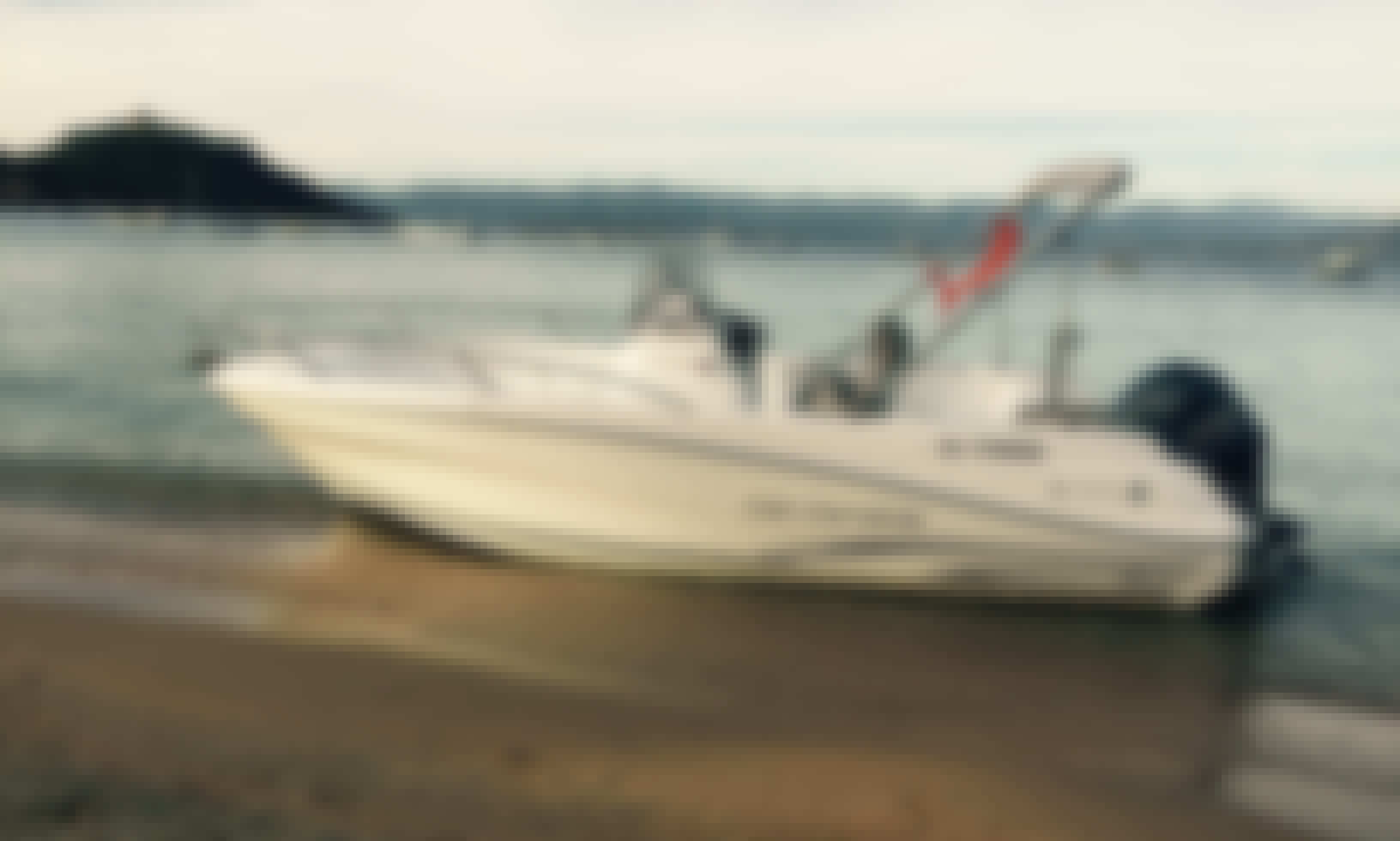 Motor Boat Rental Cape Camarat 650 in Campomoro