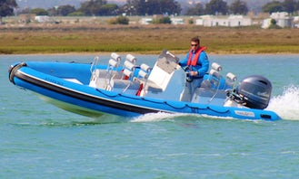 Speed Boat Tour at the Ria Formosa Natural Park