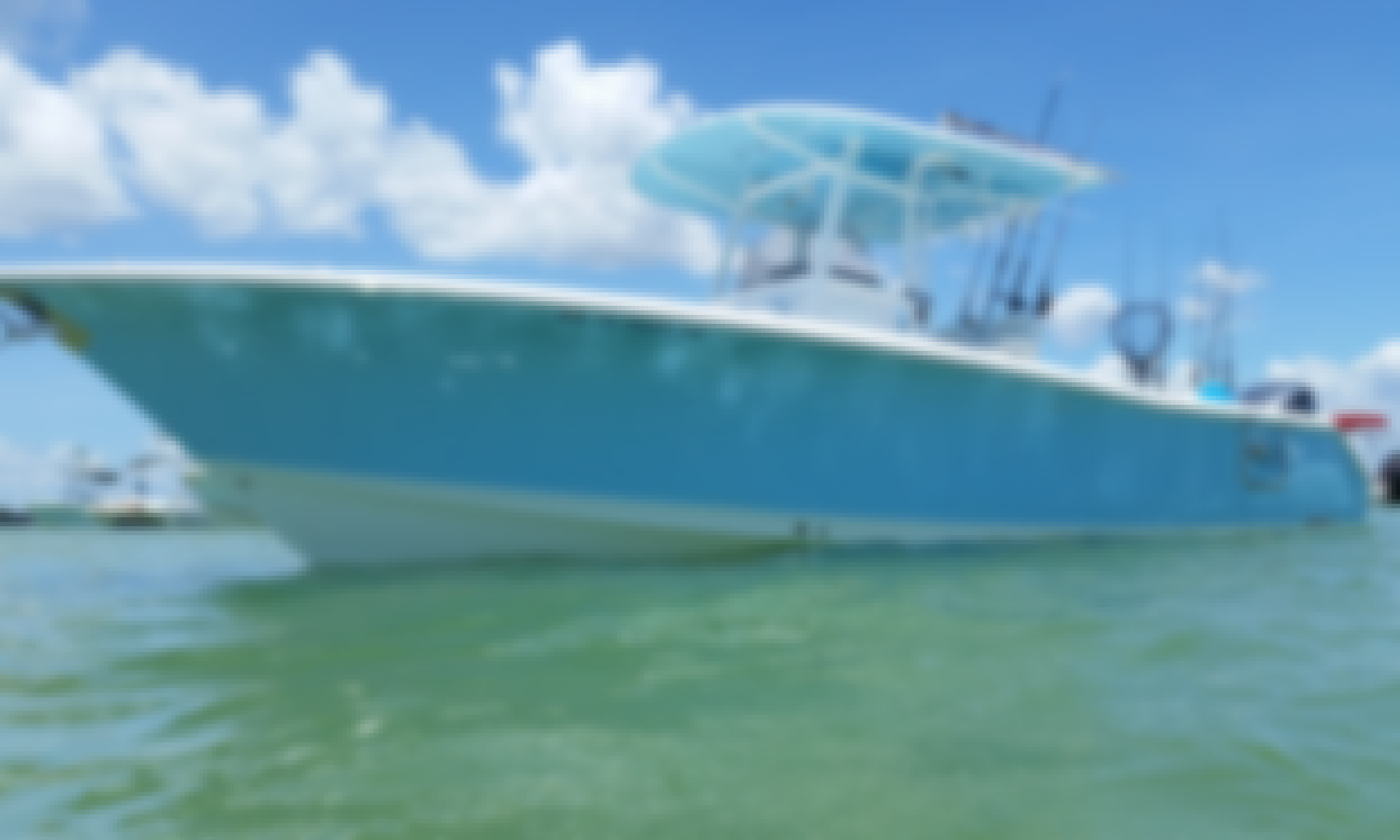 NEARSHORE and OFFSHORE SPORTFISHING CHARTERS