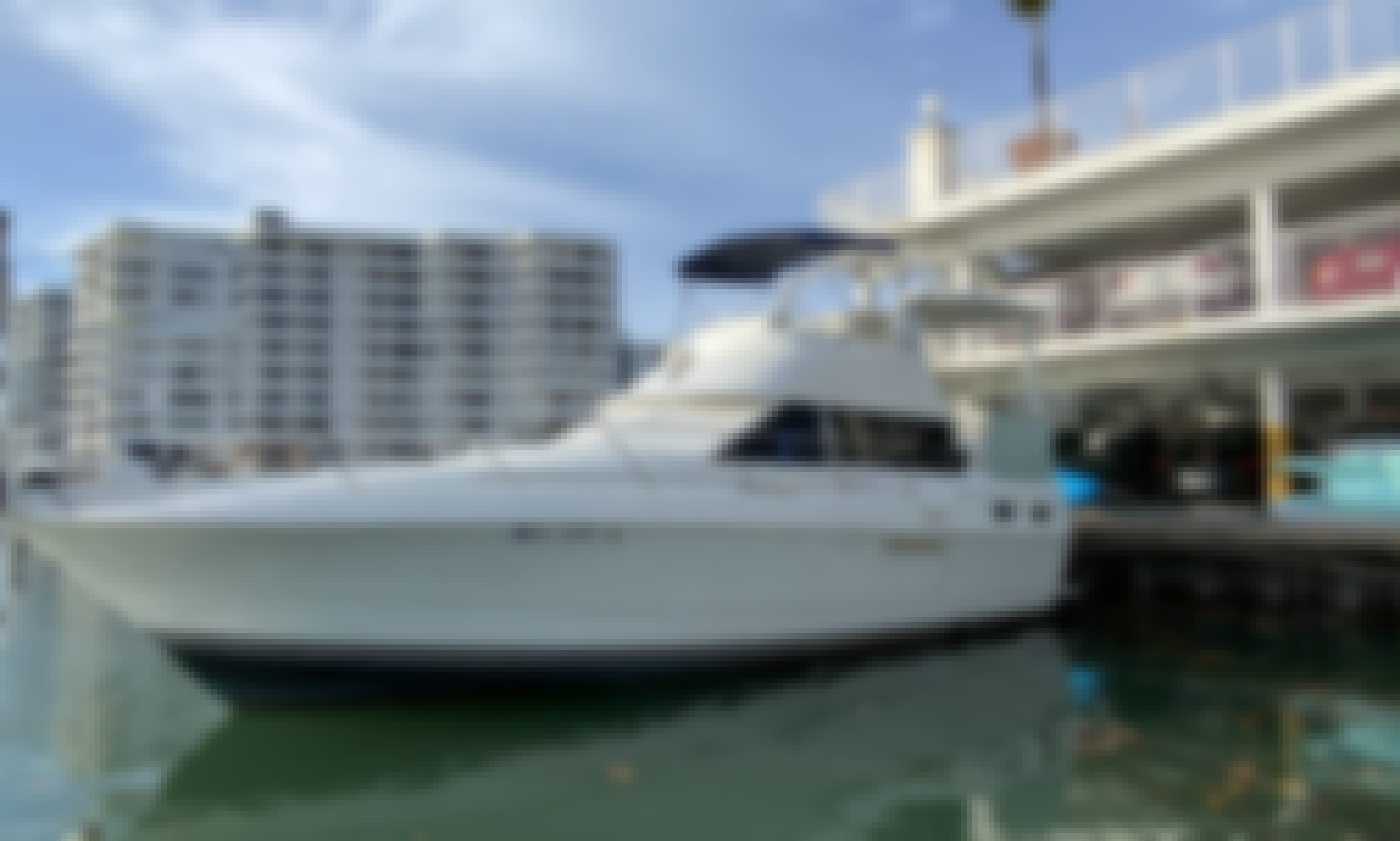 Enjoy Miami, Yacht 40ft With Captain & Gift, NO HIDDEN FEE