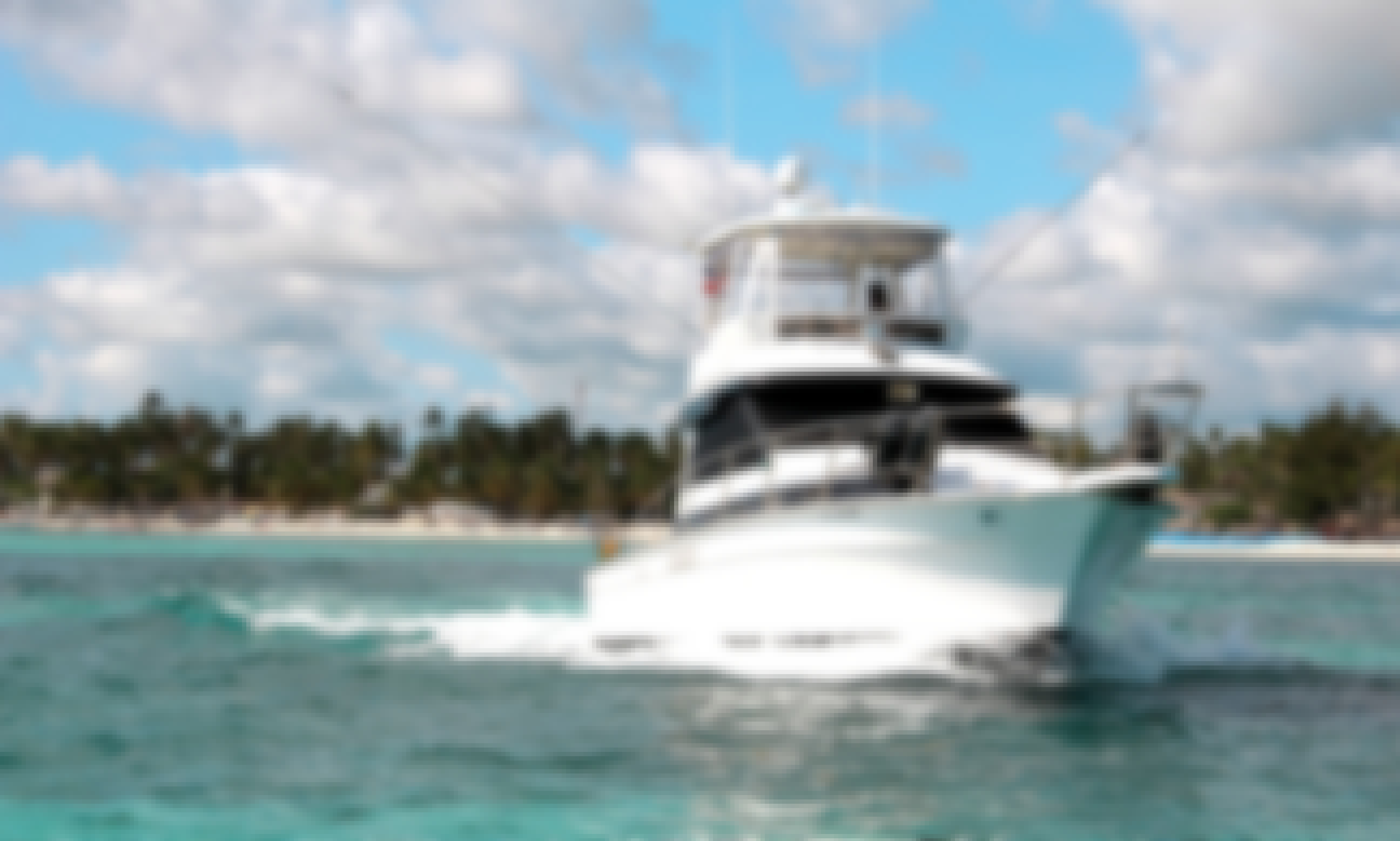 Fishing Charter on 39' Mediterranean Fishing Boat in Punta Cana, La Altagracia