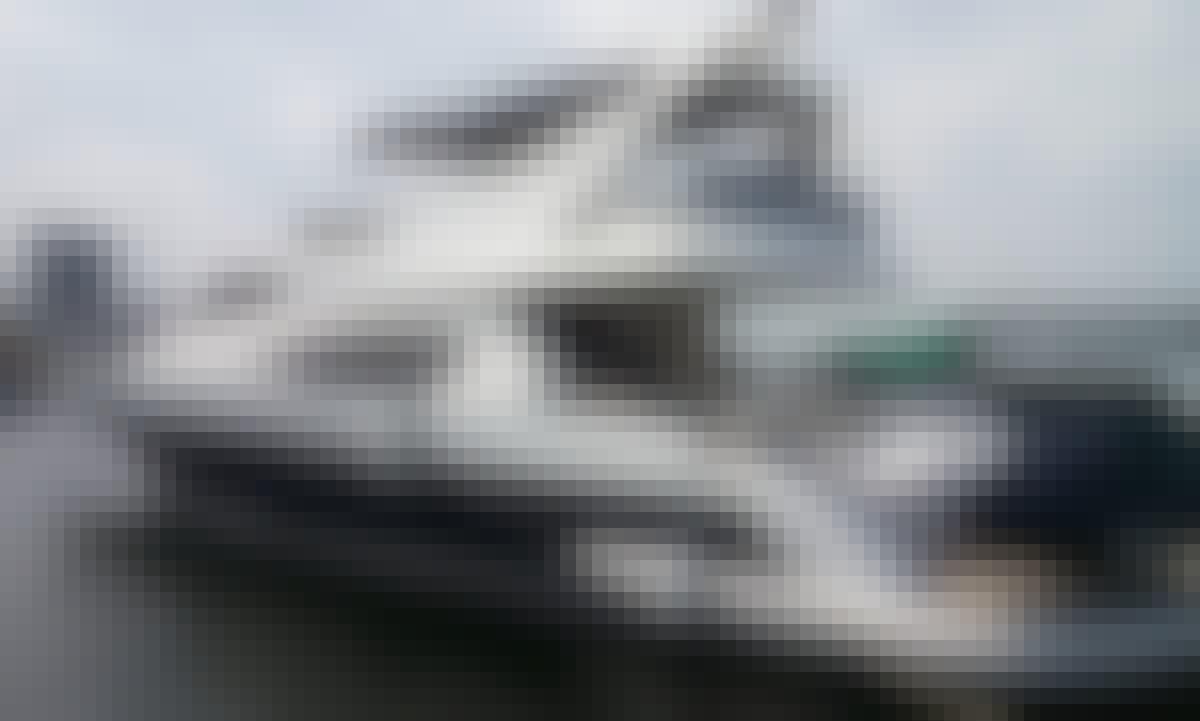 72ft Princess Diana Fly Follows Yacht in Rio de Janeiro, Brazil