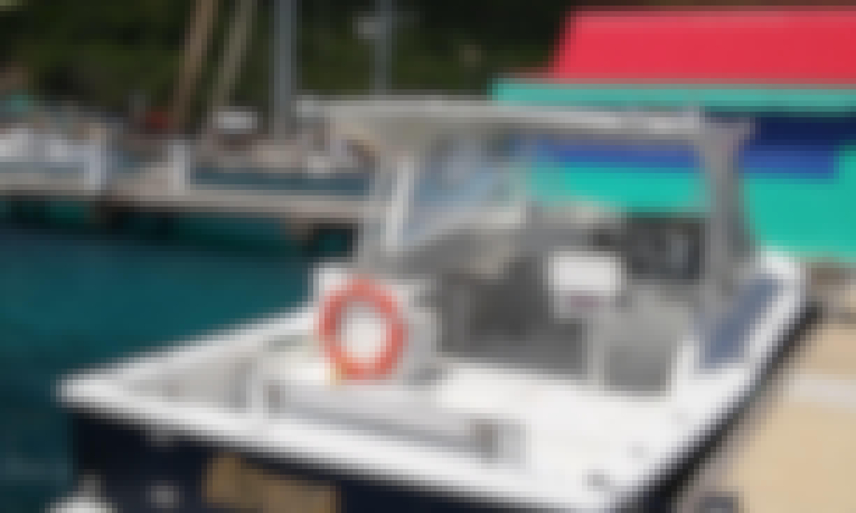 Fabulous Chris Craft Boat for charter -  British Virgin Islands