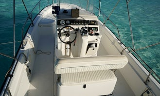 Swim and Feed The Turtles Little Farmer's Cay with Skippered Boston Whaler 220 Dauntles