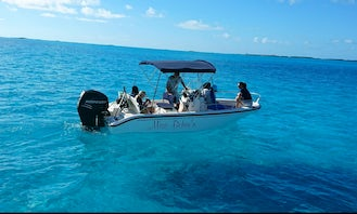 Private Boat Adventures on Staniel Cay with the Boston Whaler 180 Dauntless with Bimini Top Center Console