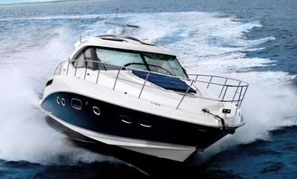 Sea Ray Sundancer 470 Motor Yacht for Rent with Captain in Long Island or NYC