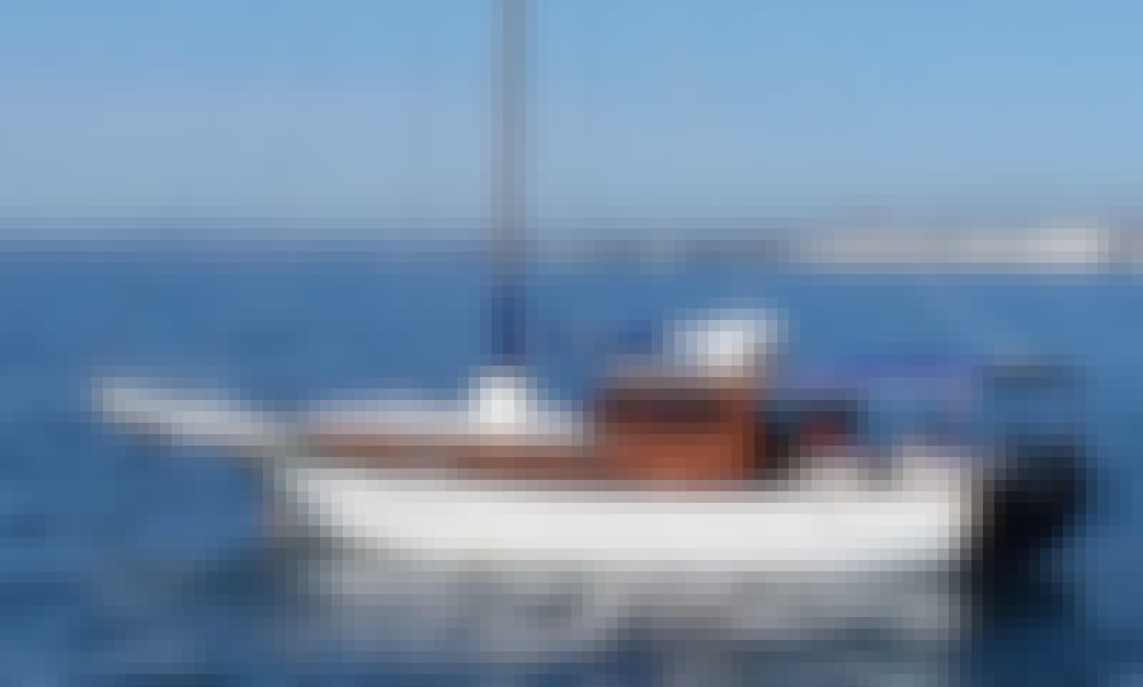 Enjoy Party Boat in Marbella, Andalucía