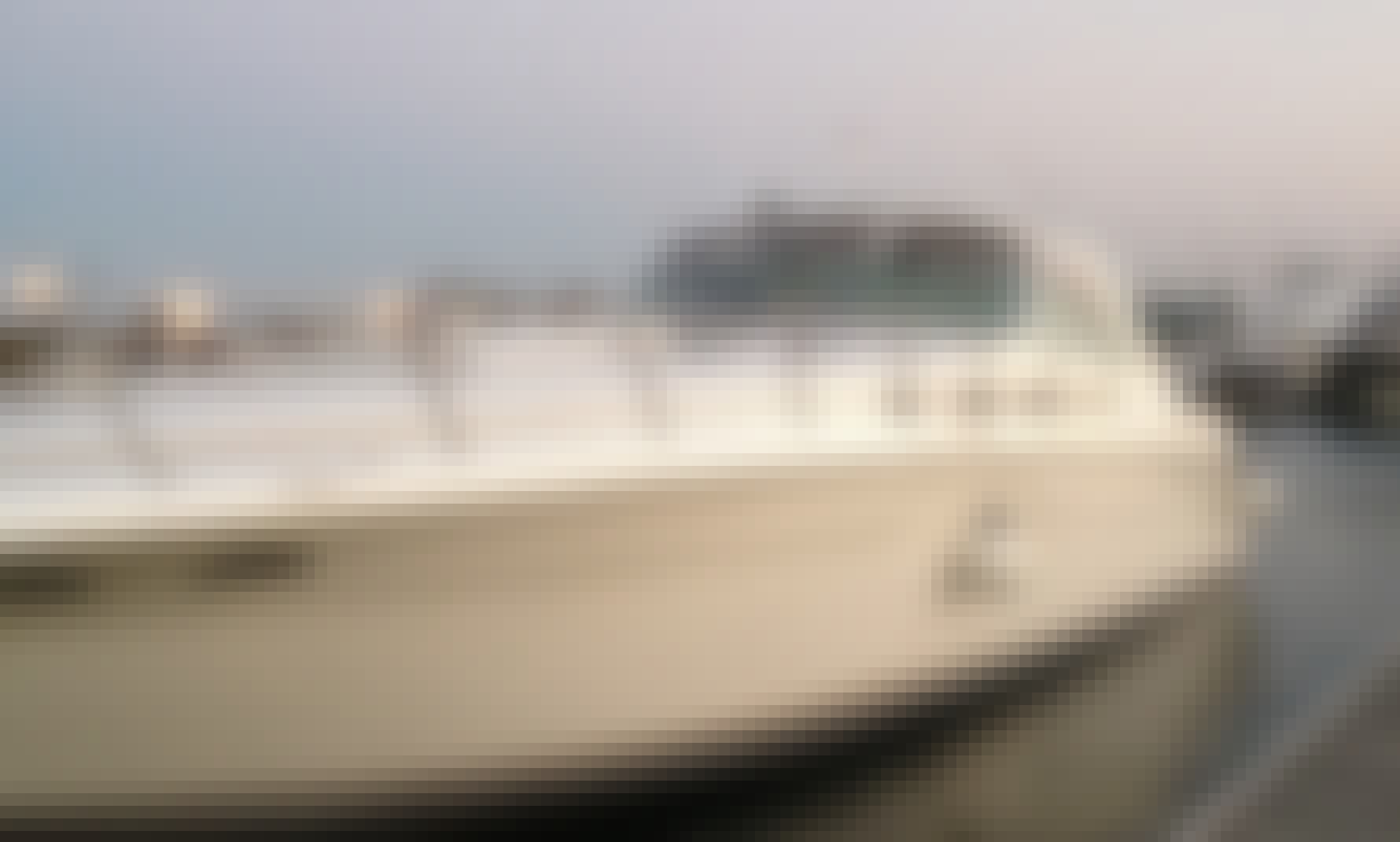 50 ' Sea Ray Motor Yacht - Relax and Enjoy the Sun with Family or Friends! USCG Captain Provided