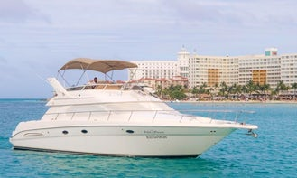 Sea Ray Motor Yacht 46 foot long in Cancun! Enjoy the best yacht private trip up to 15 pax