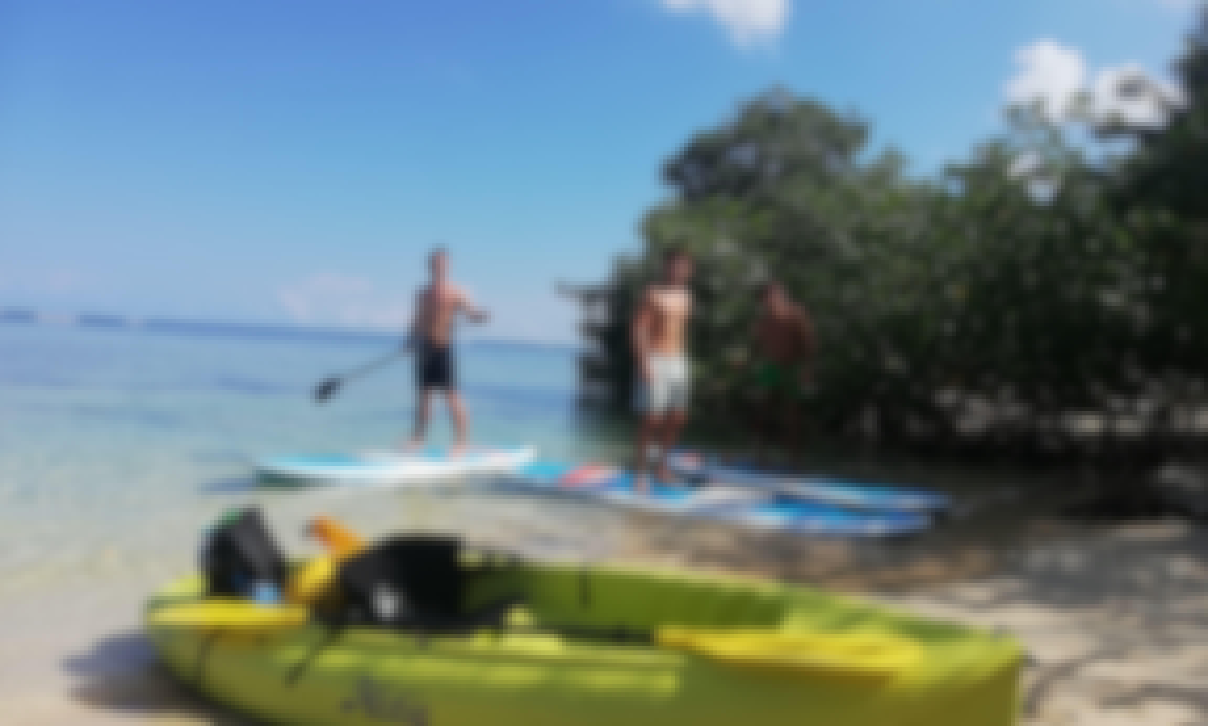 Branded Stand-up Paddleboard Rental in Las Terrenas
