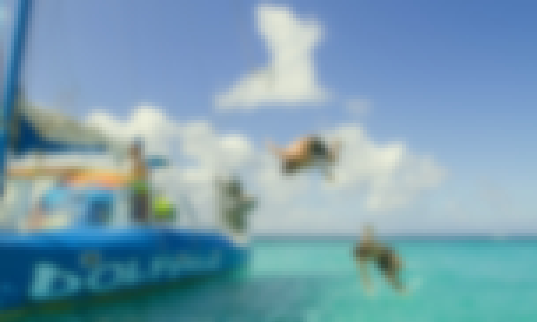 "Catamaran ""Dolphin"" Private Cruises in Noord, Aruba"