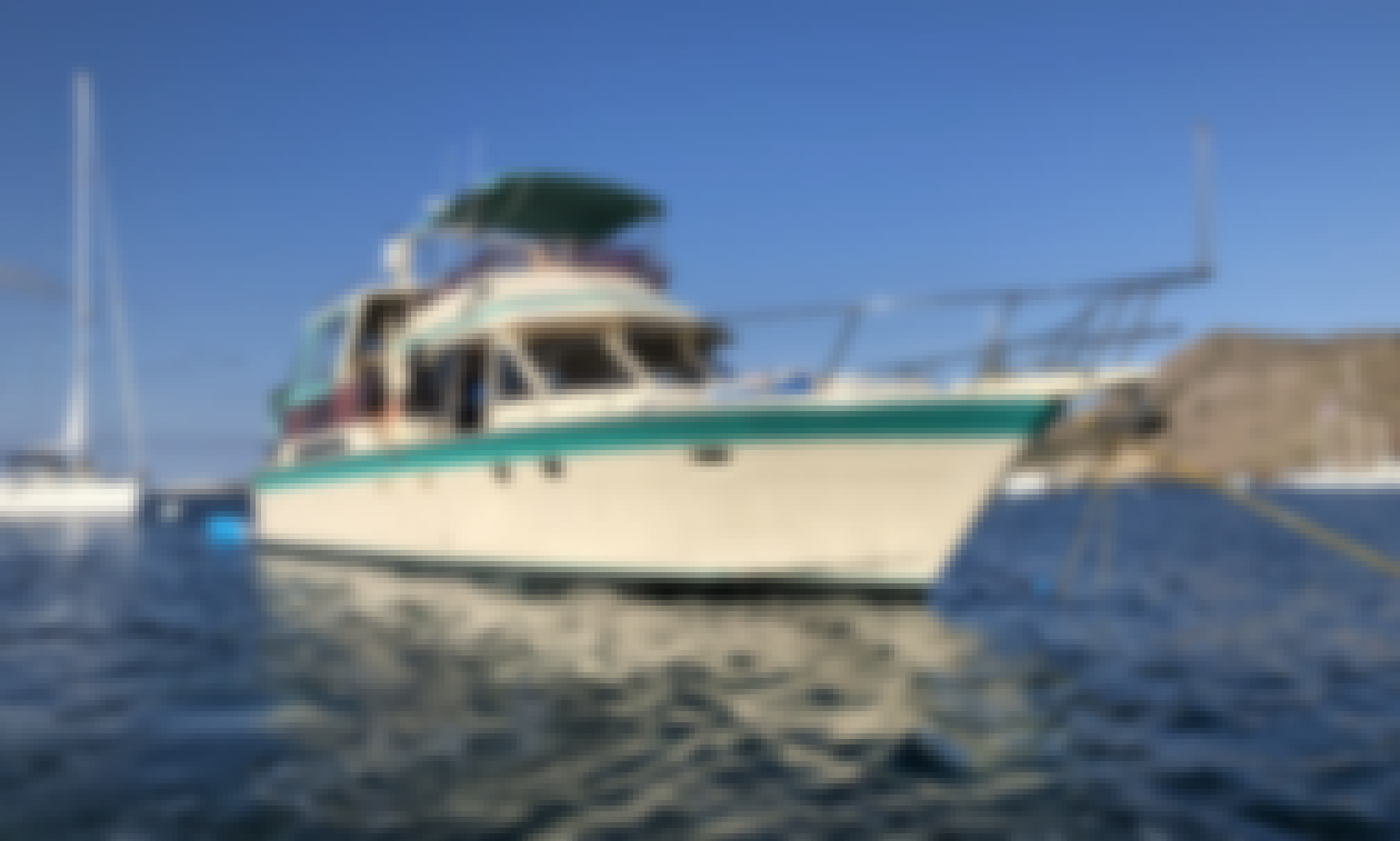 Charter this 60' HiStar Yacht Fisher to Santa Catalina Island!