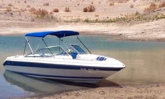23' Sea Ray 210 Motor boat Rental