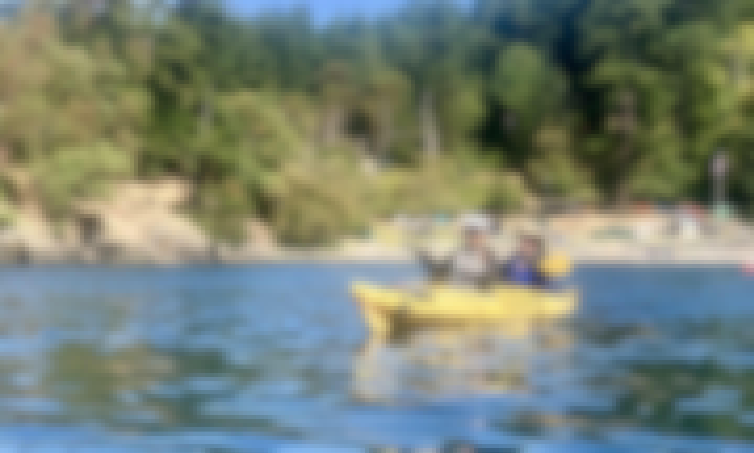 Half Day Griffin Bay Kayaking Tour