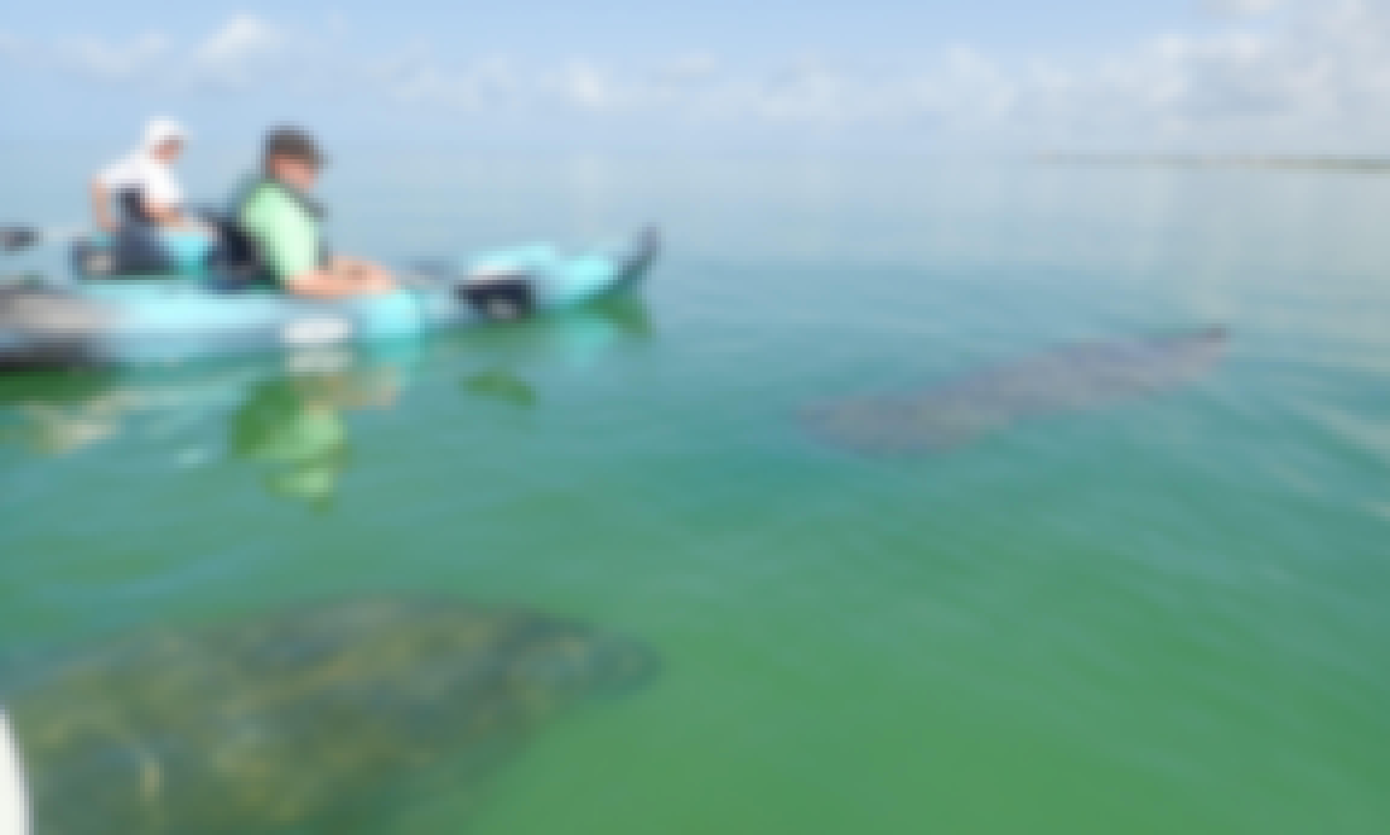 Paddle Naples - Single Kayak Rental