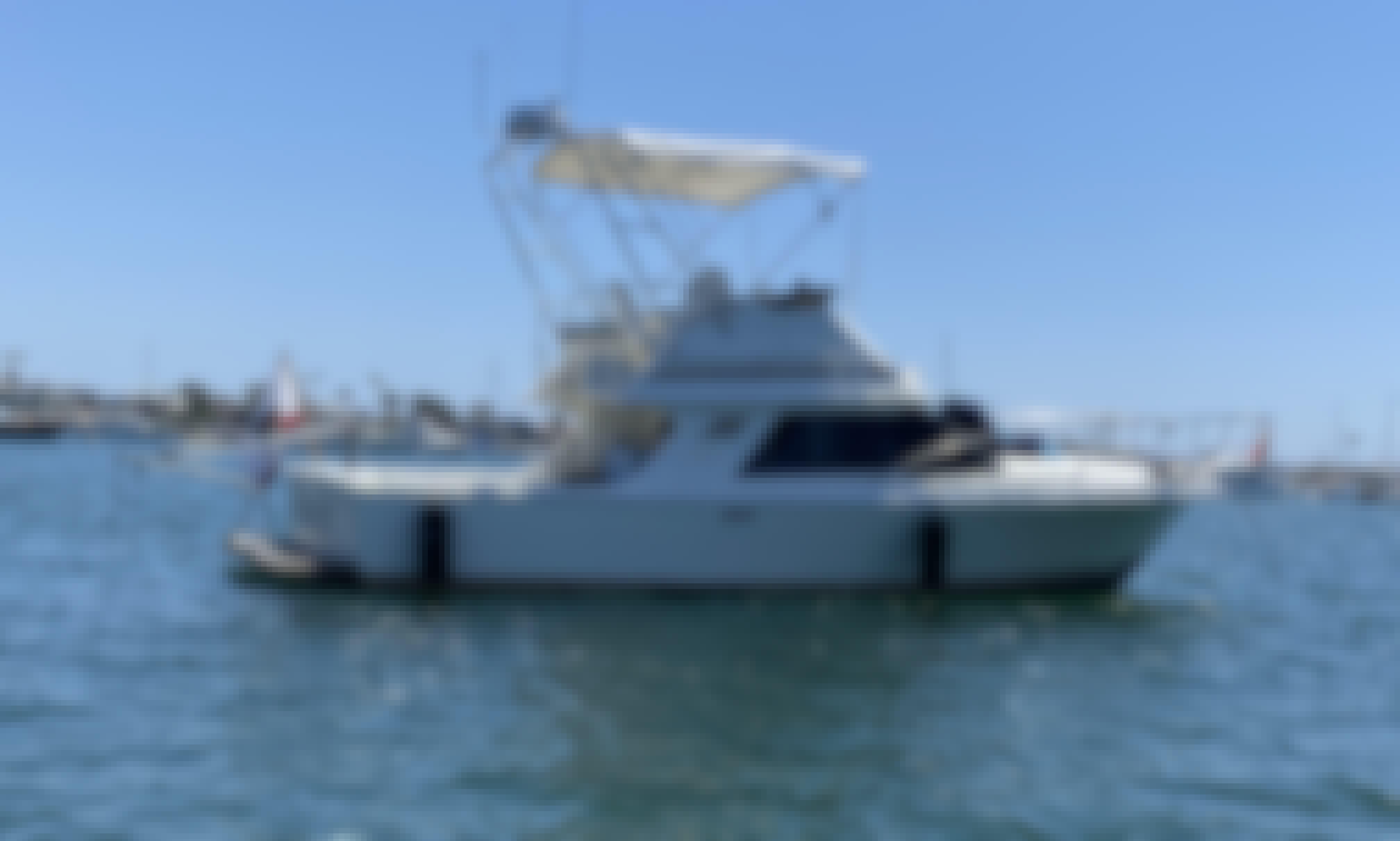 Blackfin 29' Flybridge Fully Restored Classic in Newport Beach!