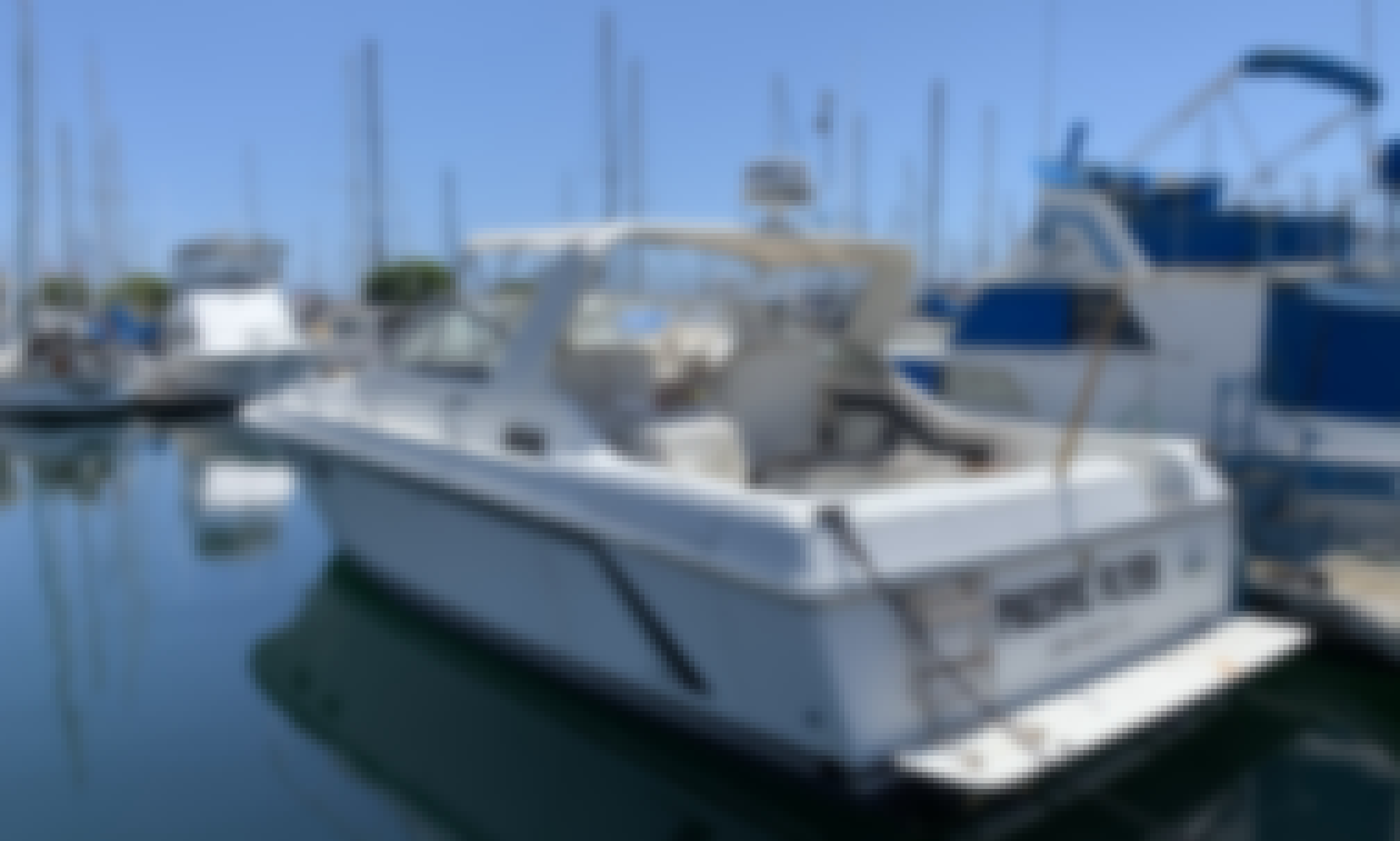 6 Person Captained Yacht for Rent in Los Angeles, California