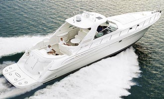 60ft SEA RAY TOP RATED! Booking Christmas Parade Now!