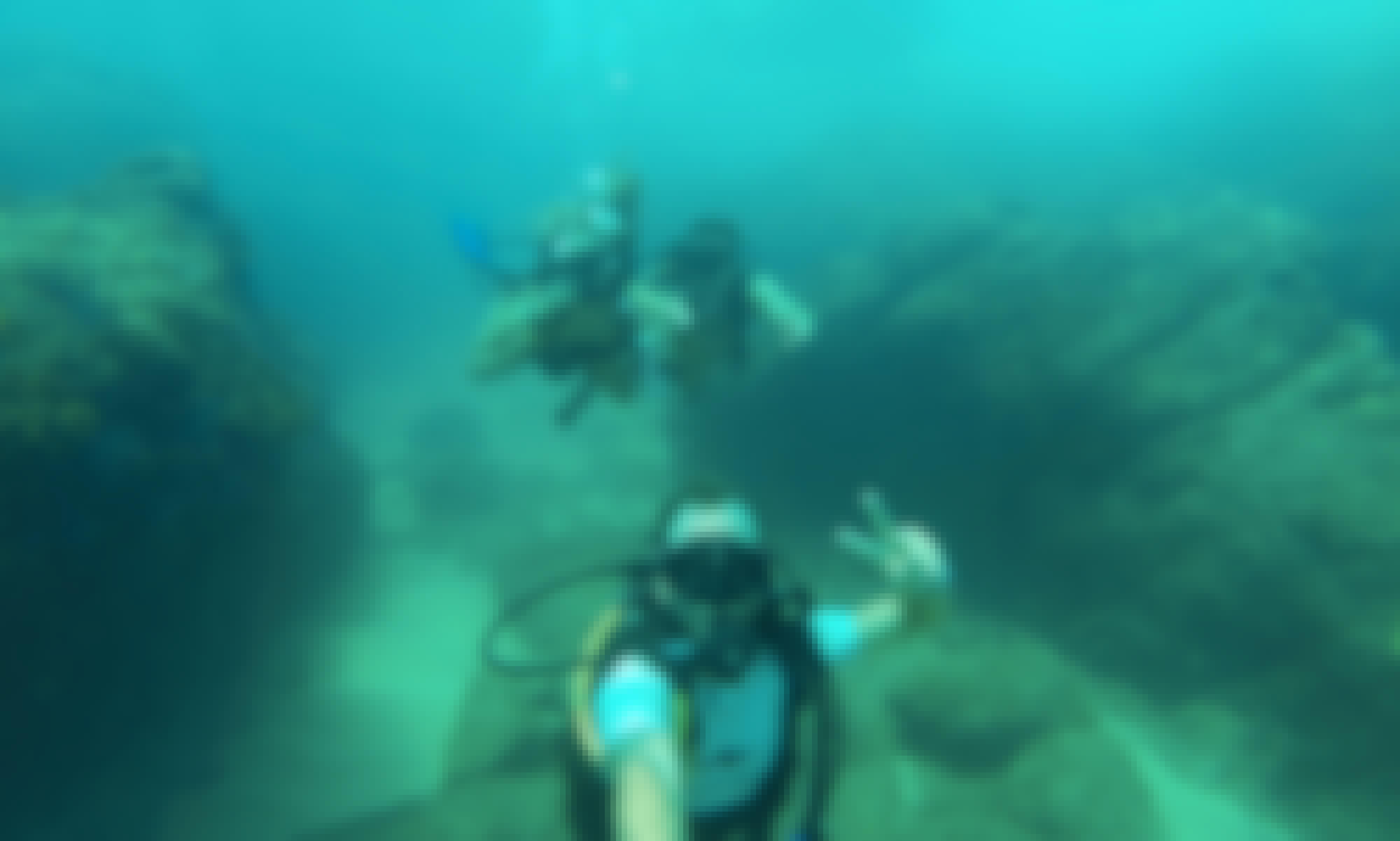 PADI Discover Scuba Diving Cabo San Lucas