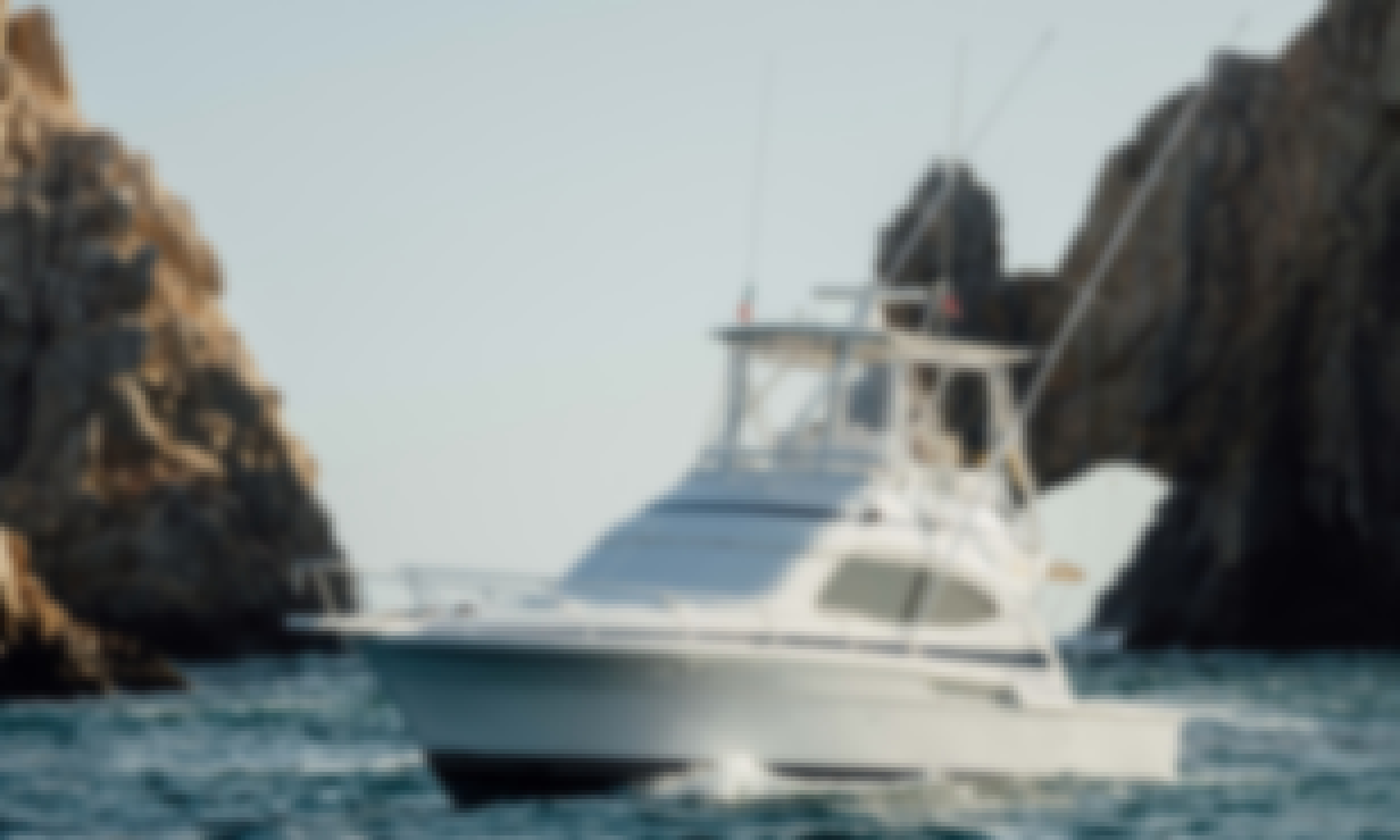 40' Bertram Falcon Sportfishing Yacht in Cabo San Lucas, Baja California Sur