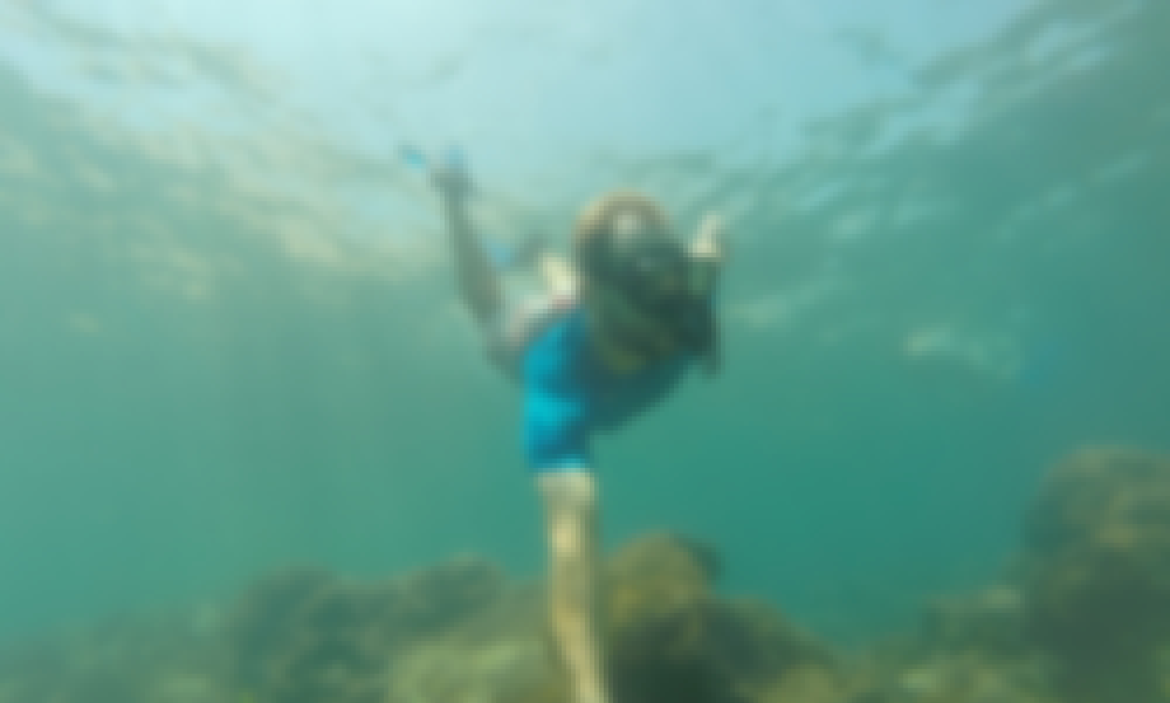 Private Snorkeling Tour in Cabo San Lucas 2hr