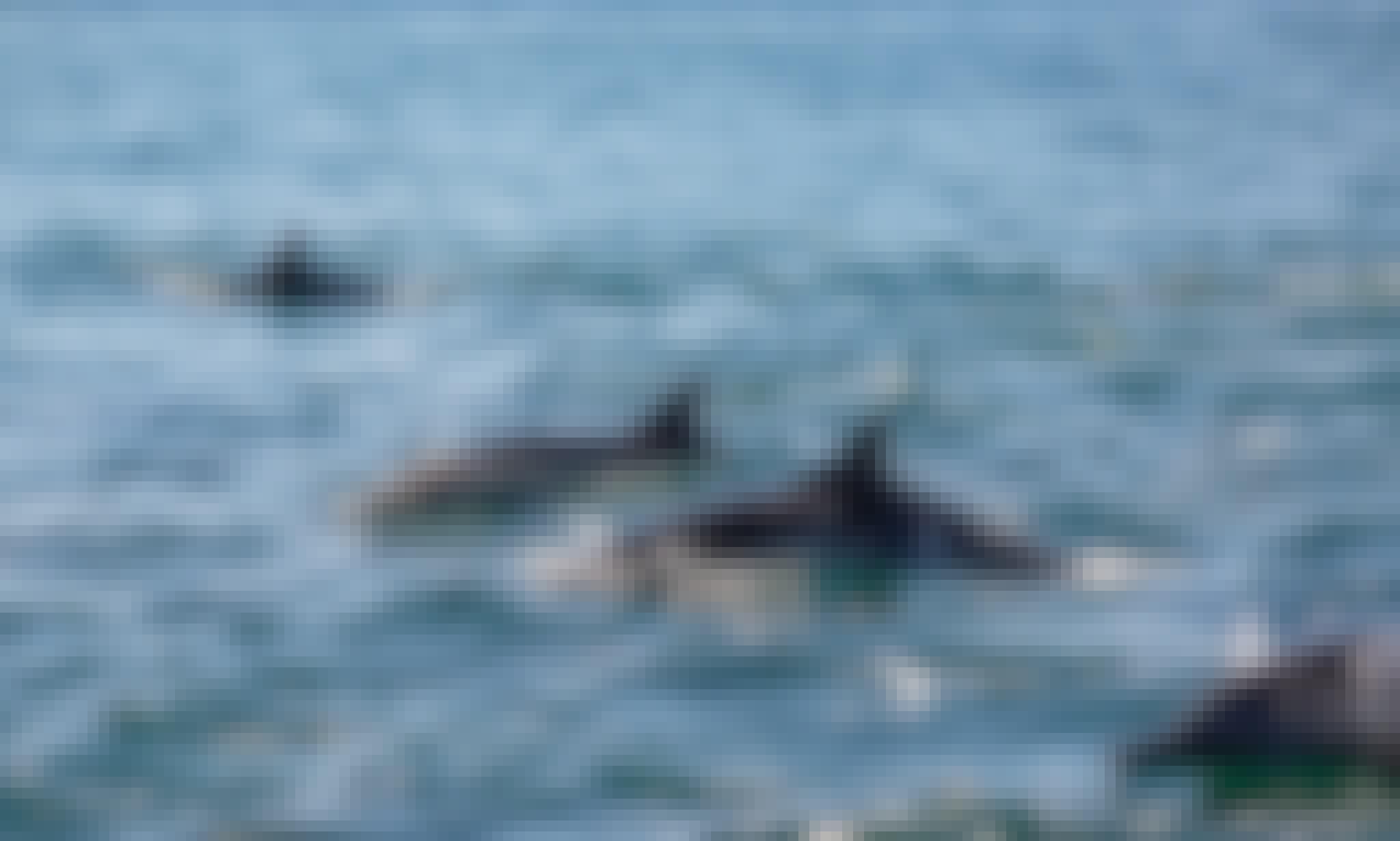 Coronado Island Tour in Loreto Baja California Sur