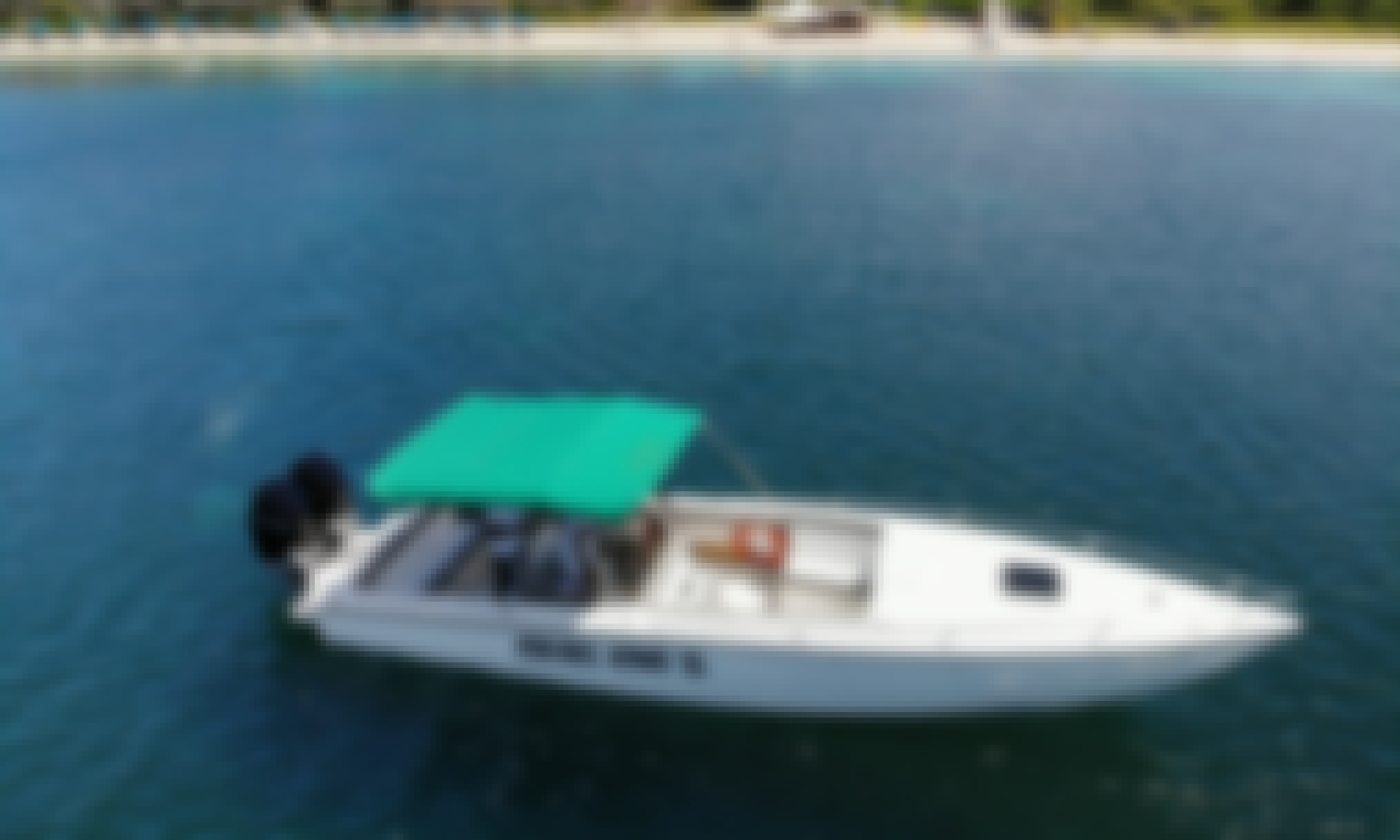 Full Day Private Speedboat Charter for Up to 12 People Saint Lucia, BVI