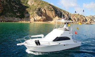 Fishing Charter on 31ft Sport Fisherman in Cabo San Lucas, Baja California Sur