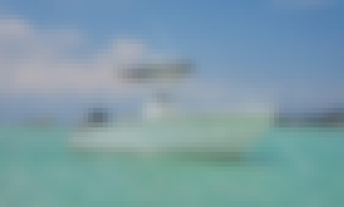 Private Snorkeling / Beach Adventures - Okaloosa Island - Destin Area