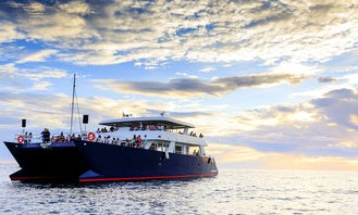 Amazing Tours in Cabo San Lucas on a Luxury Large Catamaran