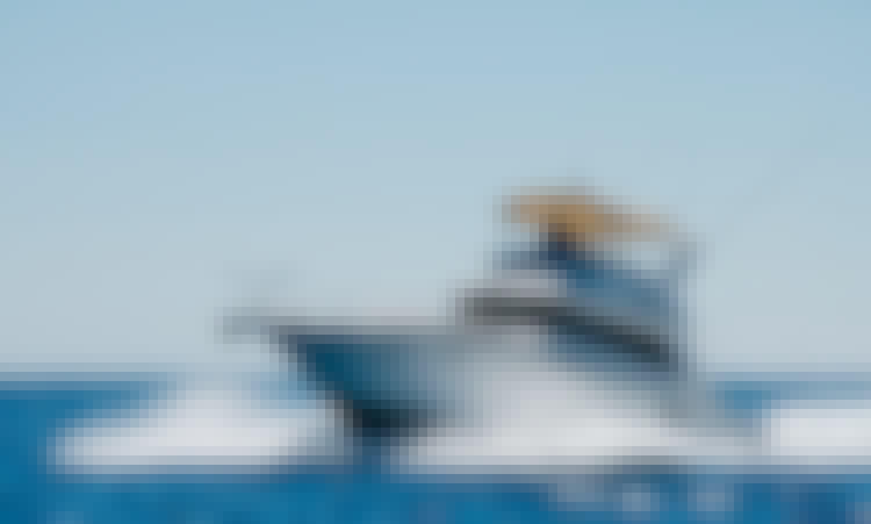 40' SeaRay — All-Inclusive Sportfishing