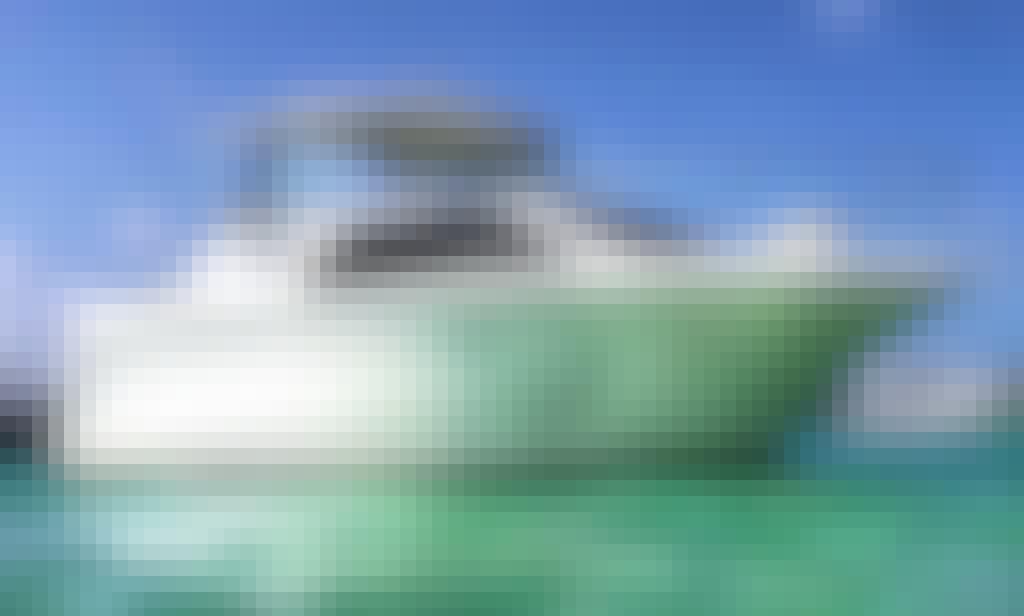 Charter Bayliner 242 Motor Yacht in Miami, Florida!
