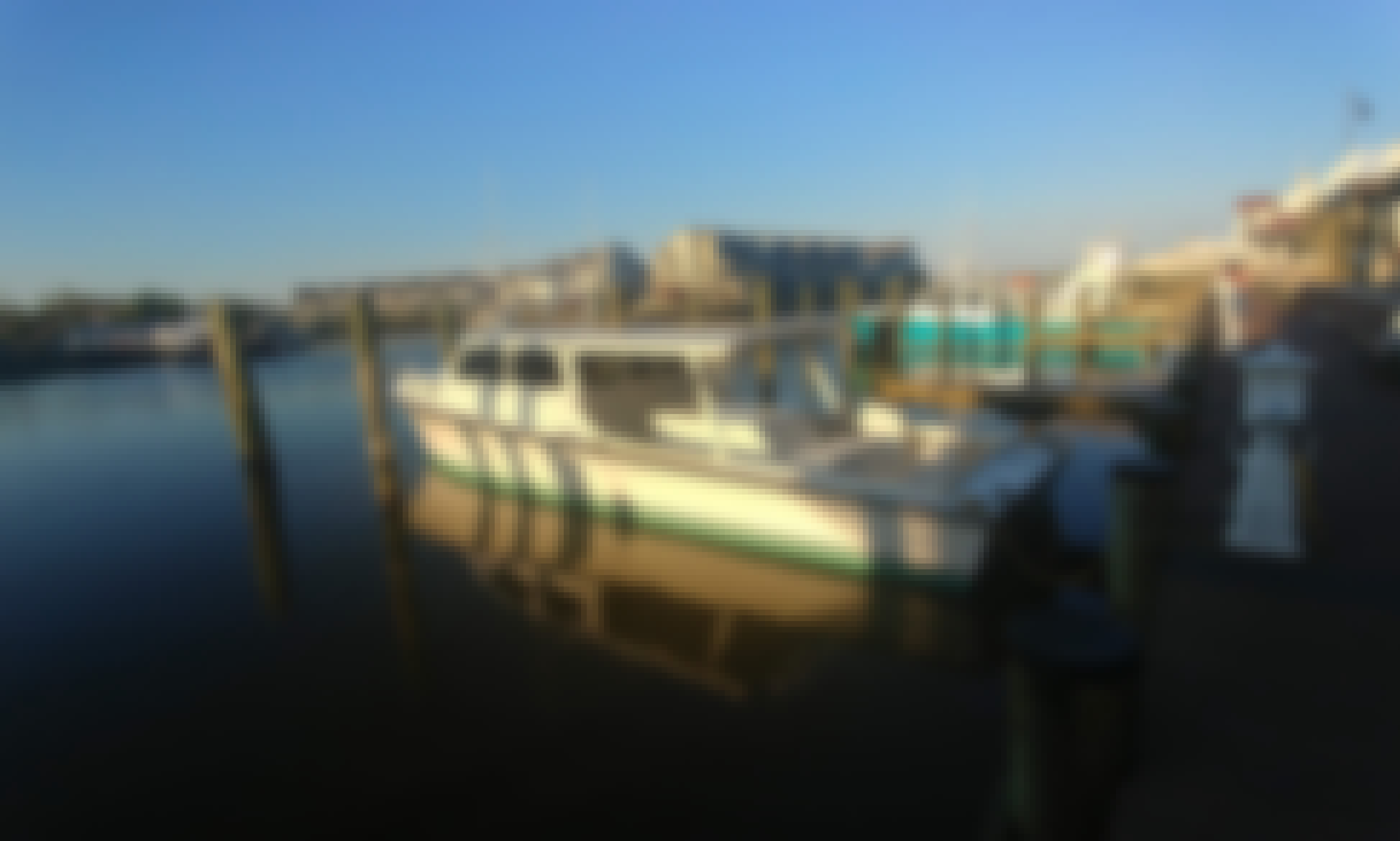Captained Fishing Trips in North Beach