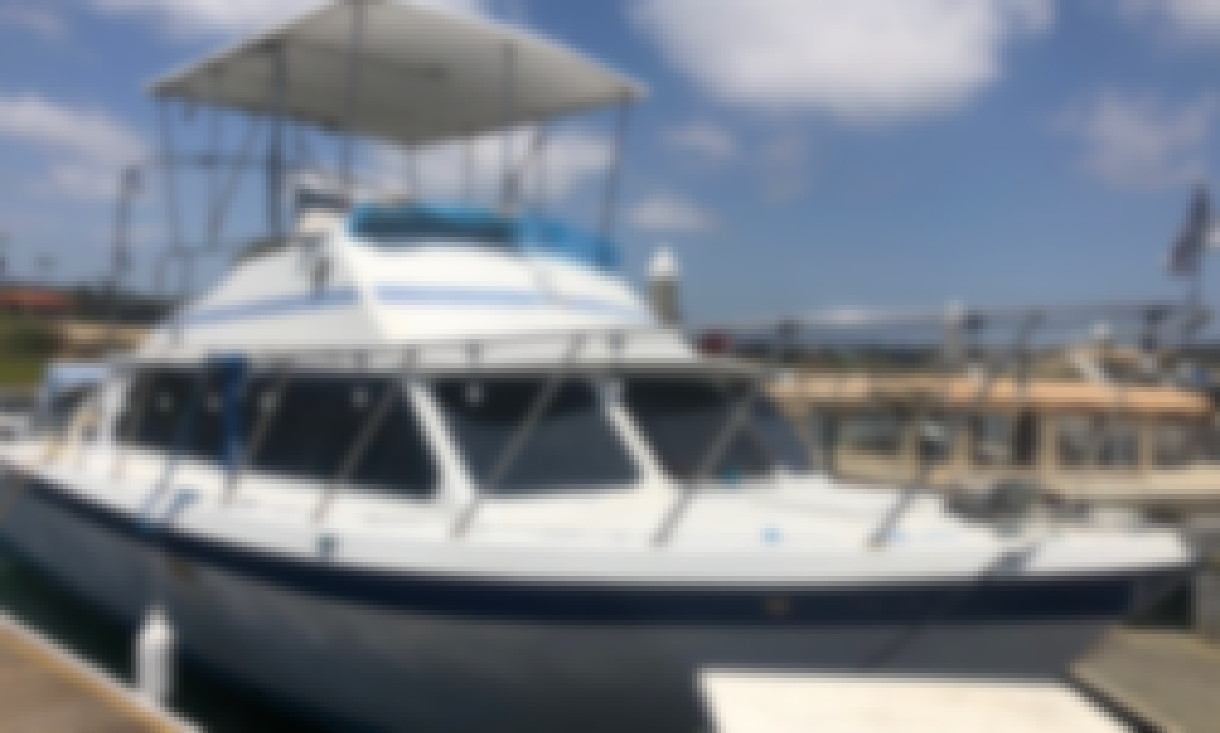 "Come float on the 34' Luhrs Sedan Motor Yacht ""Boomerang"" in Newport Beach. California"