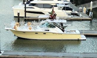 Tiara 3600 Open Motor Yacht in Newport Beach, California