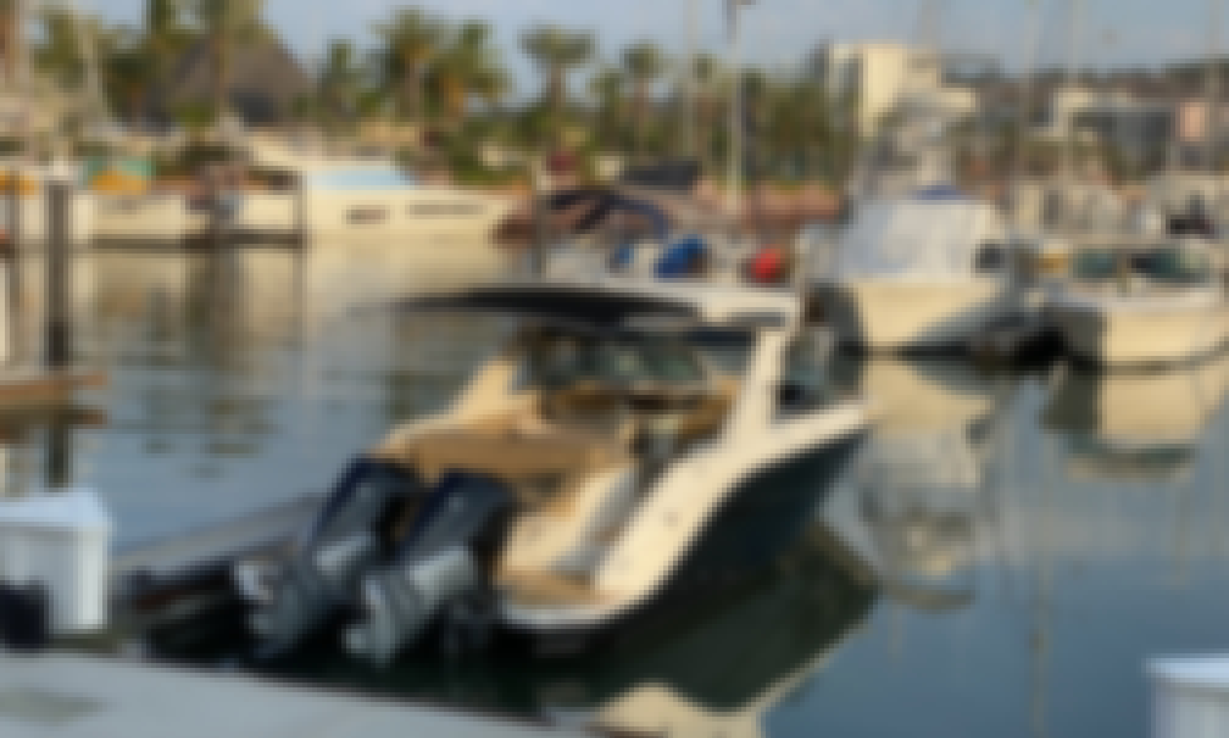New 2019 Sea Ray 31 SLX in La Paz, Baja California Sur