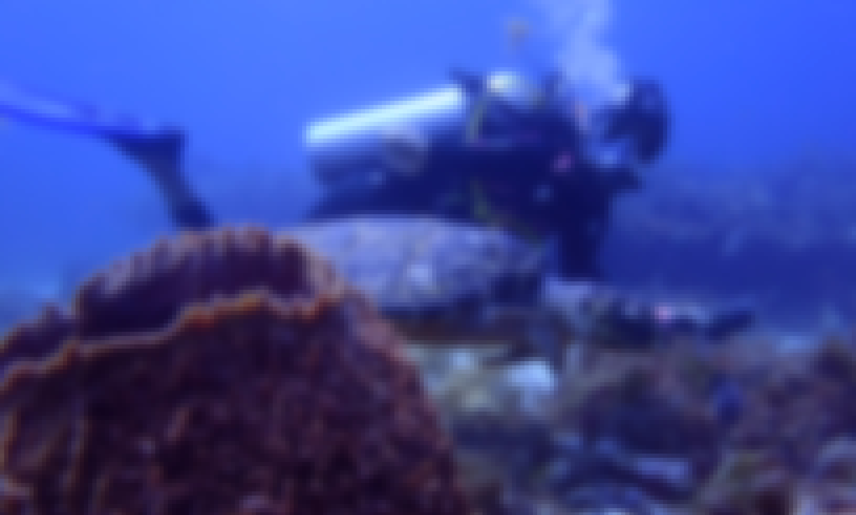 2 Tank Musa Reef Trip from Isla Mujeres, Quintana Roo