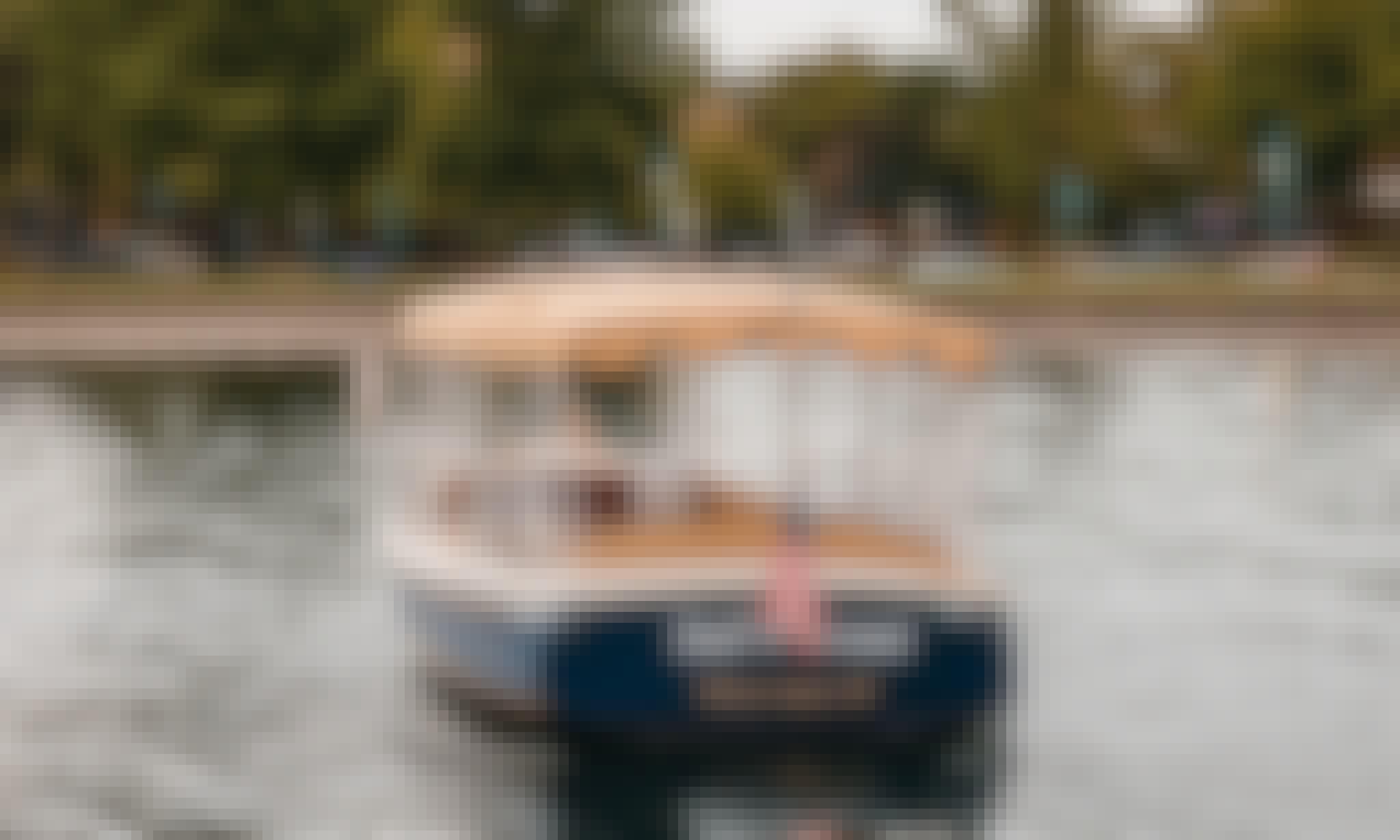"22' ""Bay Island"" Duffy Electric luxury Boat Rental in Kirkland, WA"